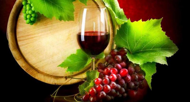 Festa del Vino a Procida 11 e 12 Novembre