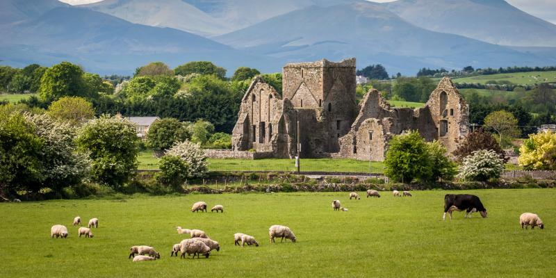 In Occasione Del St. Patrick's Day Viaggio in Irlanda 8 Giorni